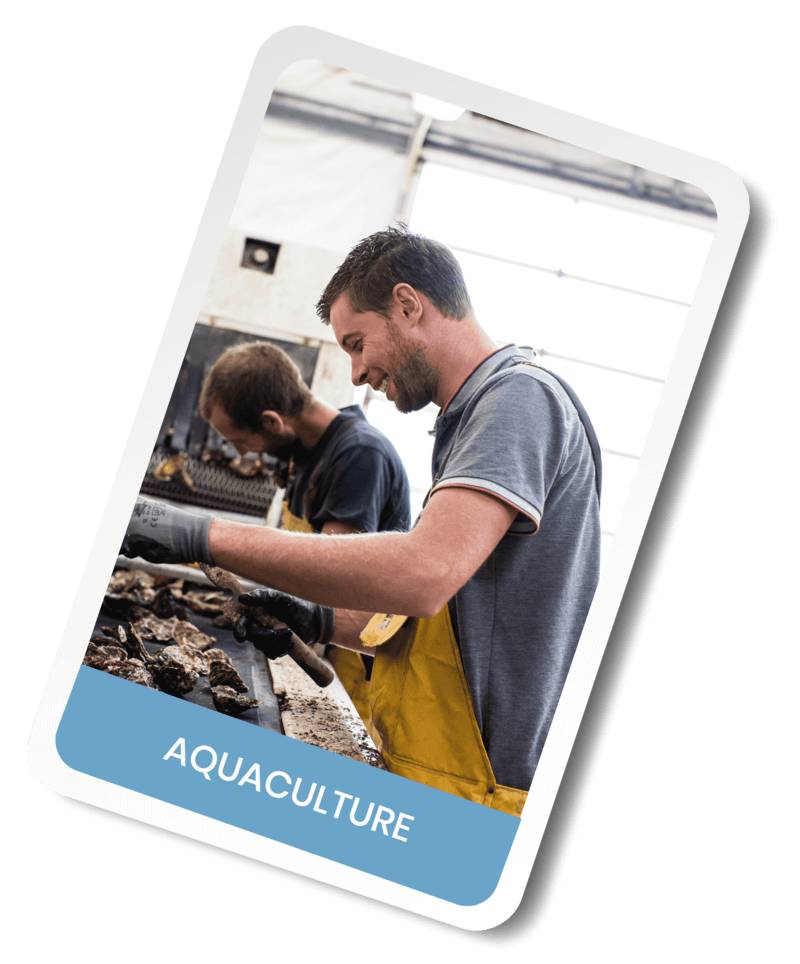 Aquaculture Agri Interim